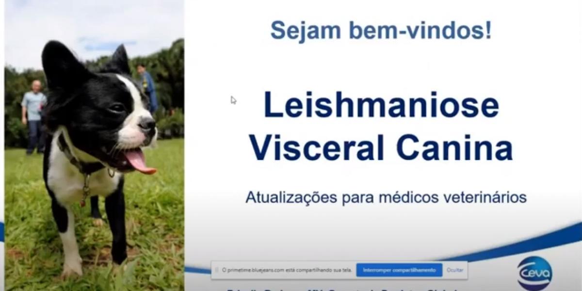 capa webinar_lvc